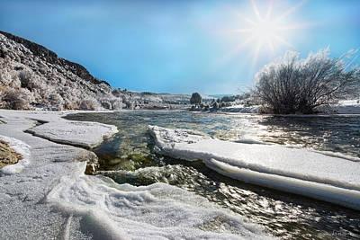 Photograph - Brilliant Winter Sun by Leland D Howard