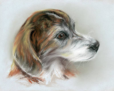 Pastel - Brindle Beagle Mix Portrait by MM Anderson