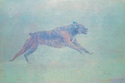 Brindle Boxer Art Print by Tom Bradley