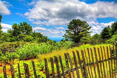 Photograph - Brinegar's Garden by Dale R Carlson