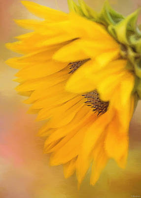 Digital Sunflower Painting - Bring Sunshine - Sunflower Art by Jordan Blackstone