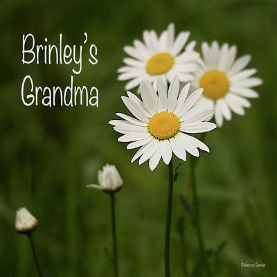 Photograph - Brinley's Grandma by Rebecca Samler