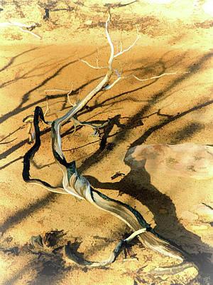 Photograph - Brins Mesa 07-100 Burnt by Scott McAllister