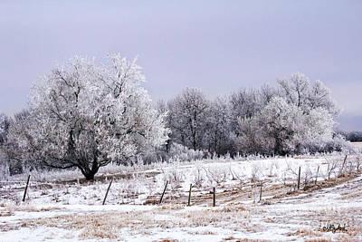 Landscape Photograph - Brisk Wintry Day 1 by Misty Hester