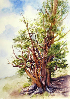 Painting - Bristle Cone Pine by Bonnie Rinier