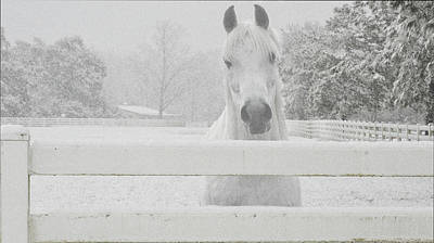 Photograph - Bristol In The Snow by Pam Kaster