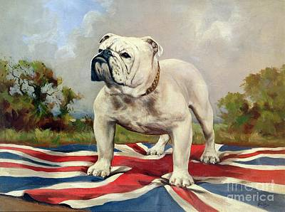 Blue And Red Painting - British Bulldog by English School