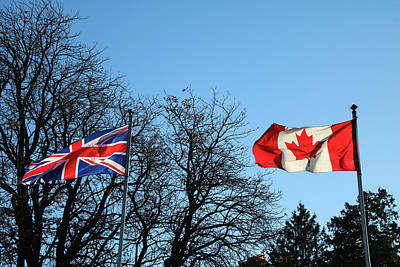 Photograph - British/canadian by Perggals - Stacey Turner