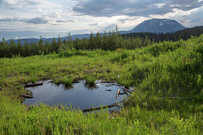 Photograph - British Columbia Meadow by Ryan Heffron