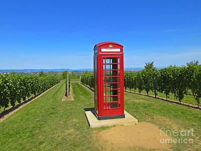 British Phone Box In Vineyard Original