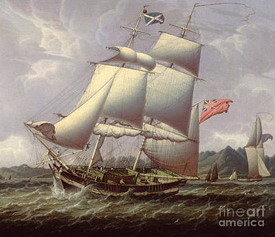 Old Sailing Ship Painting - British Schooners by Robert Salmon
