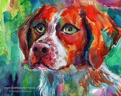 Animals Photograph - Brittany Spaniel Watercolor Portrait By by Svetlana Novikova