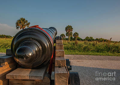 Photograph - Broad Sword by Dale Powell
