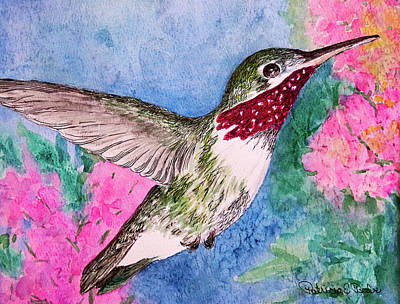 Painting - Broad-tailed Hummer by Patricia Beebe