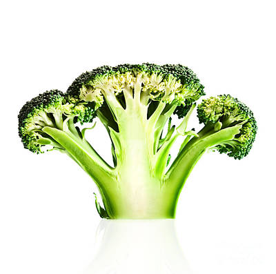 Square Photograph - Broccoli Cutaway On White by Johan Swanepoel