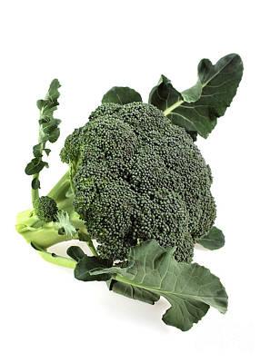 Broccoli Art Print by Gerard Lacz