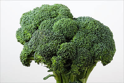 Broccoli Art Print by Robert Ullmann