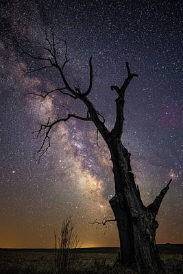 Photograph - Broken by Aaron J Groen