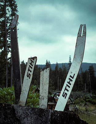 Photograph - Broken Bars by Robert Potts