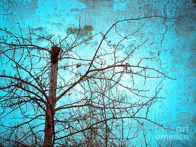 Photograph - Broken Blue Skies by Tara Turner