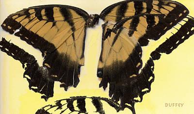 Digital Art - Broken Butterfly by Doug Duffey