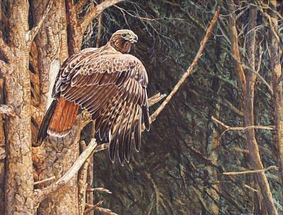 Painting - Broken Feather by Shari Erickson