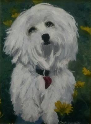 Maltese Dog, Broken Hearted Original by Angela Inguaggiato