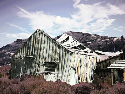 Photograph - Broken Home by Alan Socolik