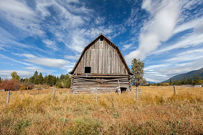 Photograph - Broken Log by Fran Riley