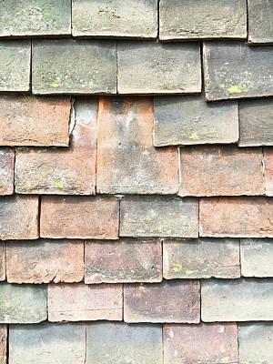 Broken Roof Tile Art Print by Tom Gowanlock
