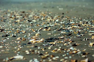 Photograph - Broken Seashells by Chris Bordeleau