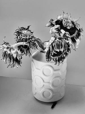 Broken Sunflowers Art Print by William Dey