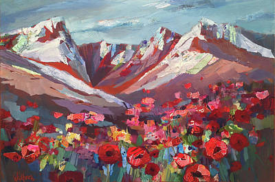 Broken Top Wildflowers Art Print