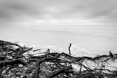 Photograph - Broken Tree Branches On The Beach After Storm by Michal Bednarek