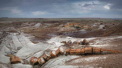 Petrified Forest Arizona Photograph - Broken Tree by Joseph Smith