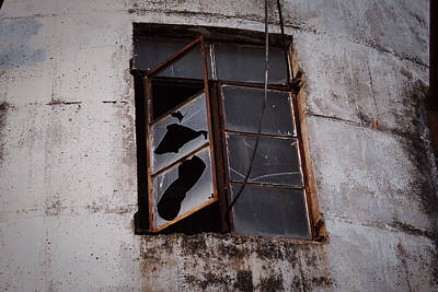 Photograph - Broken Window by Nathan Little
