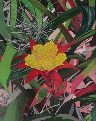Painting - Bromelaid And Airplant by Hilda and Jose Garrancho
