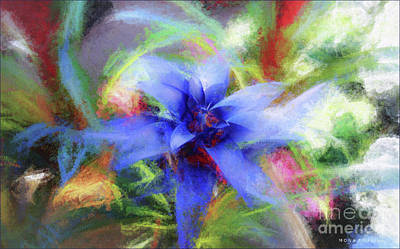 Bromeliad Exotic Tropical Plant Art Print by Mona Stut
