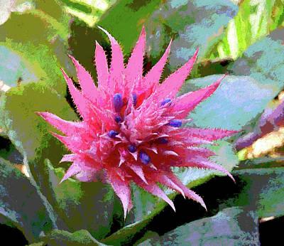 Bromeliad I Painterly Art Print