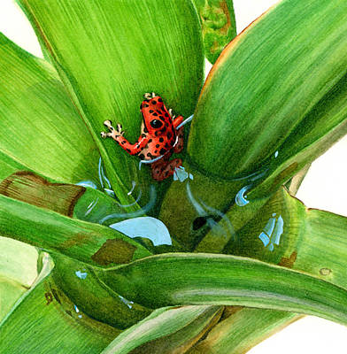 Dart Frogs Painting - Bromeliad Microhabitat by Logan Parsons