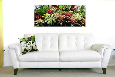 Photograph - Massed Bromeliads by Nareeta Martin