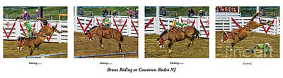 Photograph - Bronc Riding At Cowtown by Nick Zelinsky