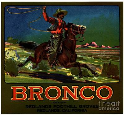 Bronco Redlands California Art Print