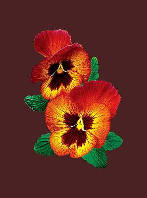 Photograph - Bronze And Yellow Pansies by Susan Savad