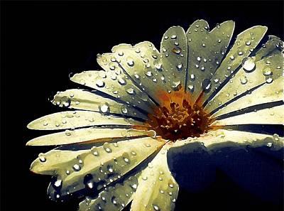 Digital Art - Bronze Flower by Mitchell Gibson