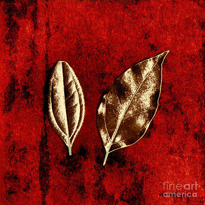 Bronze Leaf Photograph - Bronze Leaves On Red by Dolly Mohr