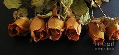 Bronze Rosebuds Original by Marsha Heiken