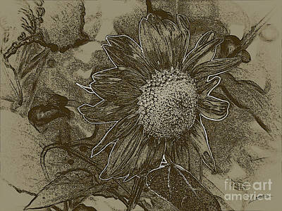 Bronzed Out Sunflower Art Print