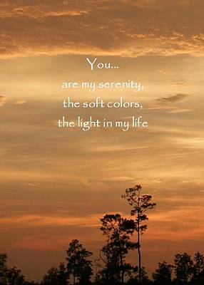 Photograph - Bronzed Sunset Quote by Ellen O'Reilly