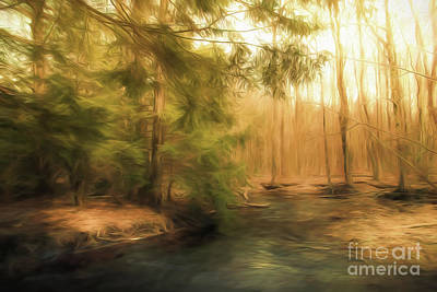 Photograph - Brook In The Woods by Mim White